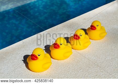 Four Yellow Rubber Ducks In A Row Close To A Swimming Pool
