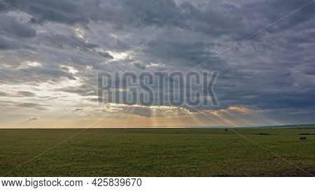 Sunset In The Endless African Savannah. The Sun's Rays Penetrate The Blue Clouds And Paint The Sky A
