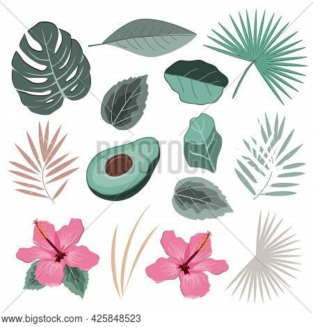 Vector Set With Wild Tropical Rainforest Plants Leaves And Flowers. Isolated Elements Of Tropic Desi