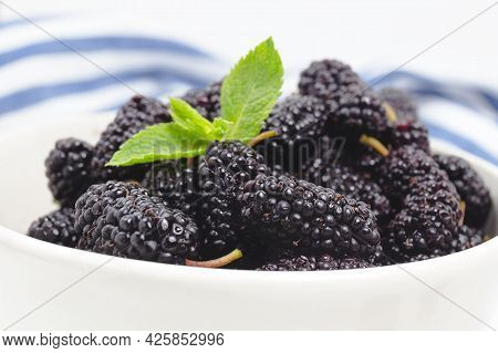 A White Bowl Full Of Ripe Black Mulberries. Summer Fresh Mulberry Fruit. Healthy Berries With Vitami