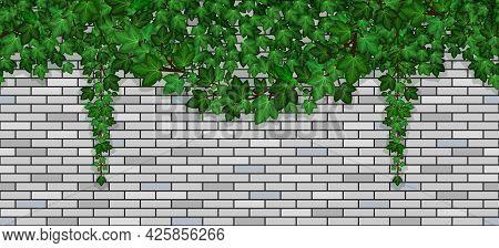 Ivy On Brick Wall. Climbing Green Ive Foliage On Gray Brick Stones, Summer Garland On Building Wall