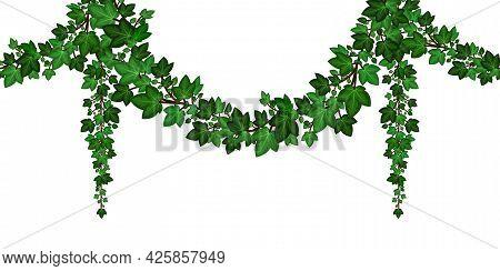Green Ivy Garland, Hanging Ivy Leaves, Climbing Foliage, Decorative Frame Border Element. Summer Gar