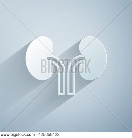 Paper Cut Human Kidneys Icon Isolated On Grey Background. Paper Art Style. Vector