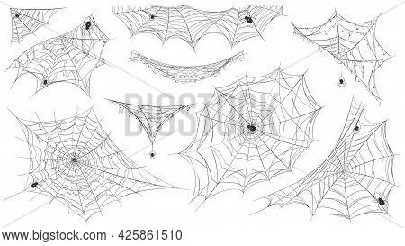 Spider Web Silhouette. Hanging Cobweb With Venom Spiders For Horror Helloween Decor. Spooky Spiderwe