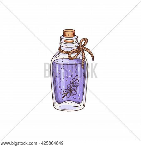 Bottle With Lavender Oil Or Aroma Essence Engraving Vector Illustration Isolated.