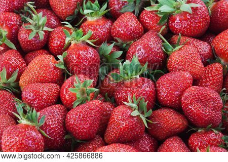 Lot of ripe delicious strawberries. Food fruity background