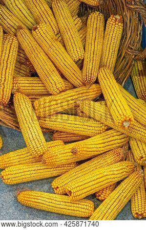 Big Bunch Of Yellow Maize Corn Cob Ears