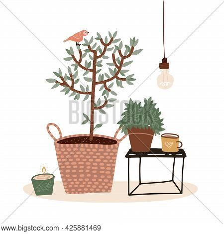 Pastel Color Composition With Small Potted Tree, Hot Beverage In Mug, Candle And Houseplant Isolated