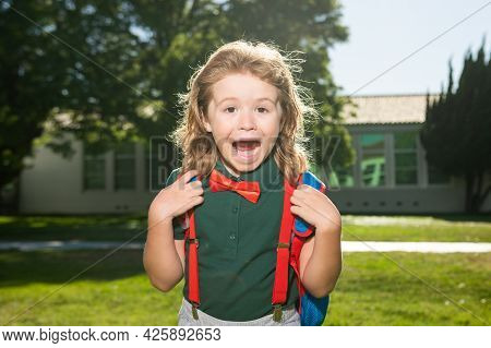 School Child Concept. Amazed Pupil, Kid In School Uniform With Backpack Outdoor. Portrait Of Excited