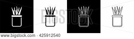 Set Plant In Pot Icon Isolated On Black And White Background. Plant Growing In A Pot. Potted Plant S