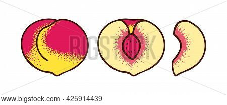 Whole Peach And Two Types Of Slices Isolated On White Background. Half And Slice Of Peach. Vector Il