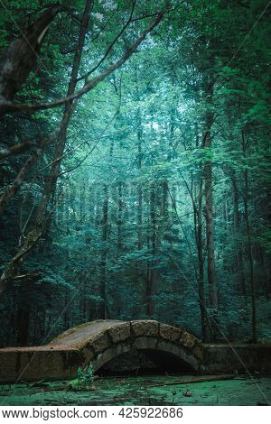 Beautiful mystical forest with old bridge, green fairy background