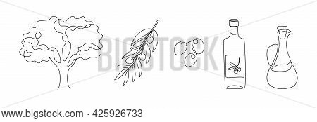 Continuous Line Olives. Line Art Glass Bottle Of Olive Oil, Tree And Branch, Cooking Ingredient. Vec