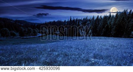 Mountainous Countryside Panorama At Night. Trees On The Meadow Along The Road. Coniferous Forest On