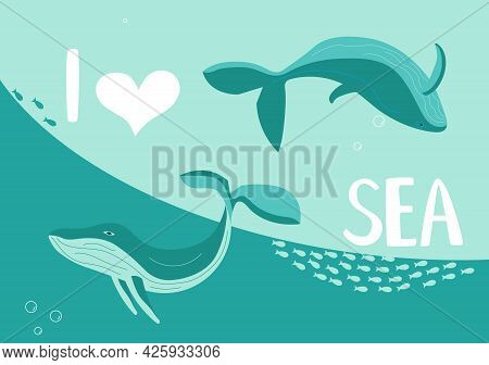 Underwater Scene With Pair Of Blue Whales On Aquamarine Background
