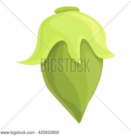 Green Lentil Icon Cartoon Vector. Bean Vegetable Plant. Lentil Seed