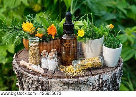 Dropper Bottle Of Calendula Essential Oil, Infusion Or Serum, Healthy Marigold Flowers And Juniper T