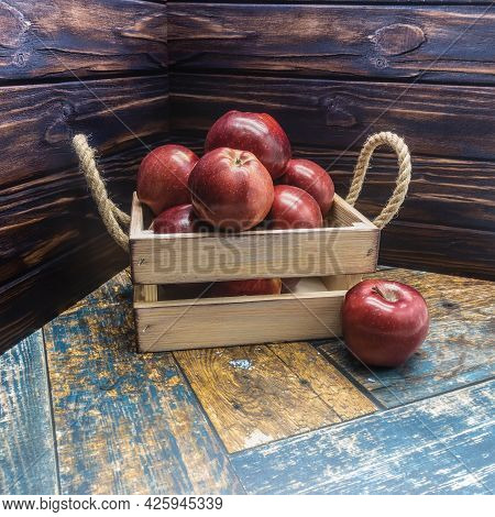 A Beige Wooden Box With Rope Handles Is Filled With Ripe Apples. One Red Fruit With A Shiny Skin Lie