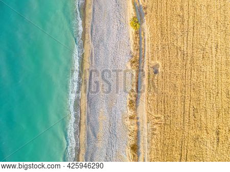 Wheat Field And Unpaved Road Along Sand Beach, Top View Directly Above