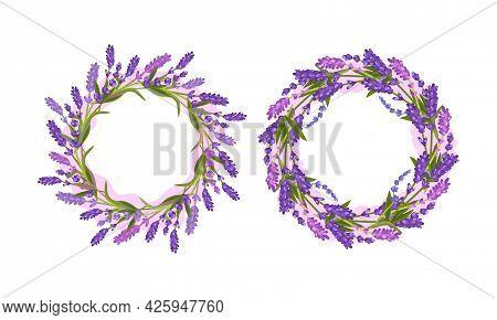 Lavender Fragrant Floral Twigs Arranged In Circle Frame Vector Set