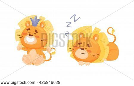 Cartoon Lion Cub Playful Character With White Teeth And Thick Mane Vector Set