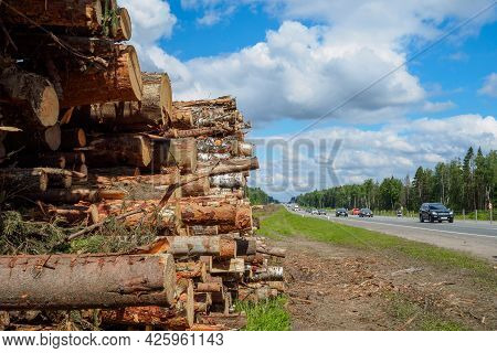 Moscow Region. Russia. July 4, 2021. The Sawn Trunks Of Pine And Birch Lie In A Large Heap By The Fo