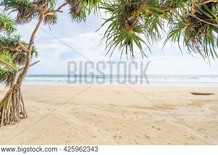 Empty Tropical Summer Beach Background Green Trees Leaves Frame With Blue Sky And White Sand Beach W