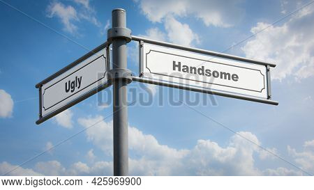 Street Sign The Direction Way To Handsome Versus Ugly