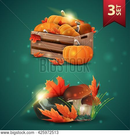 Set Of Autumns 3D Icons, Wooden Crates Of Ripe Pumpkins, Autumn Eaves, Mushrooms And Autumn Leaves