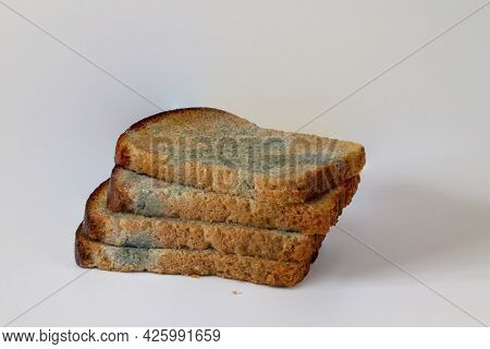 Sliced Into Slices Of Spoiled Mouldy Bread On A White Background Close-up