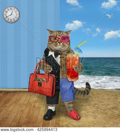 One Half Of A Beige Cat Dressed In A Suit Holds A Briefcase And The Other Half Dressed In Shorts Hol