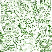 Seamless pattern background - illustration of biology drawings doodle style poster