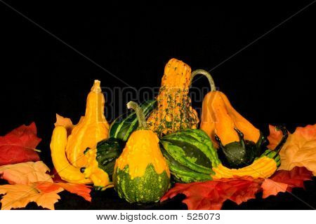 Gourds & Leaves Centerpiece