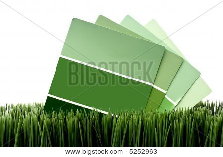 Green Paint Chip Samples On Green Grass With A White Background
