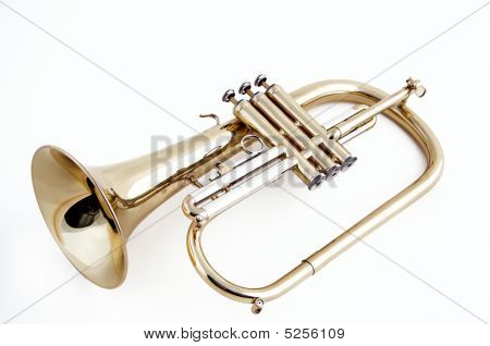 Trumpet Flugelhorn Isolated On White