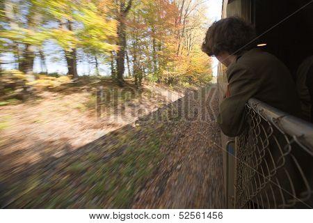 Watching Fall Foliage in a Train