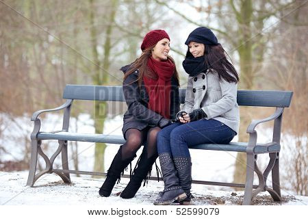 Two Bestfriends Sitting On A Park Bench