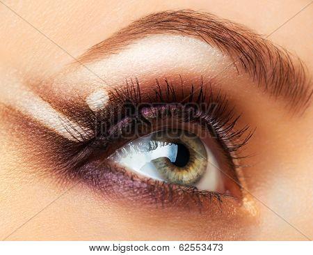 Beautiful Womanish Eye With Glamorous Makeup