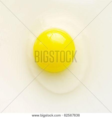 Yellow Egg.