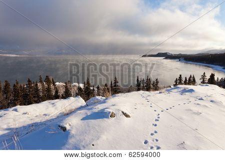Lake Laberge Yukon Ice Fogs Before Freezing Over