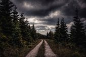 Mystical forest with rain clouds in Spindleruv Mlyn, Czech Republic poster