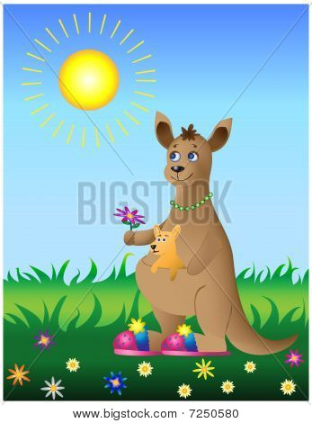 Kangaroo With Baby On Walk