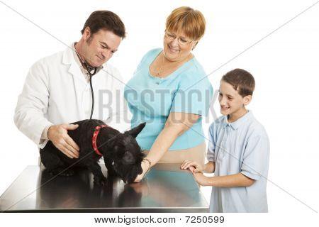 Family At The Vet