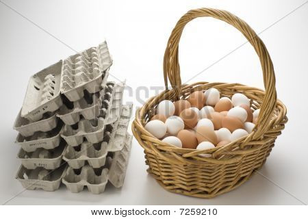 All Your Eggs In One Basket