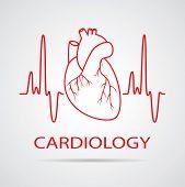vector human heart medical symbol of cardiology poster