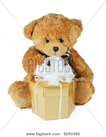 teddy bear holding gift box