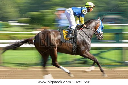 Galloping To The Starting Gate