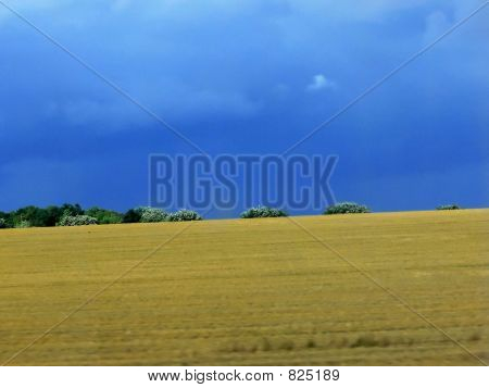 lonely horizon
