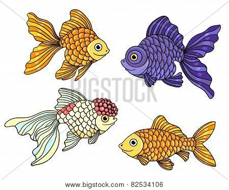 Set Of The Different Goldfishes