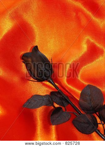 Black Rose on Orange satin